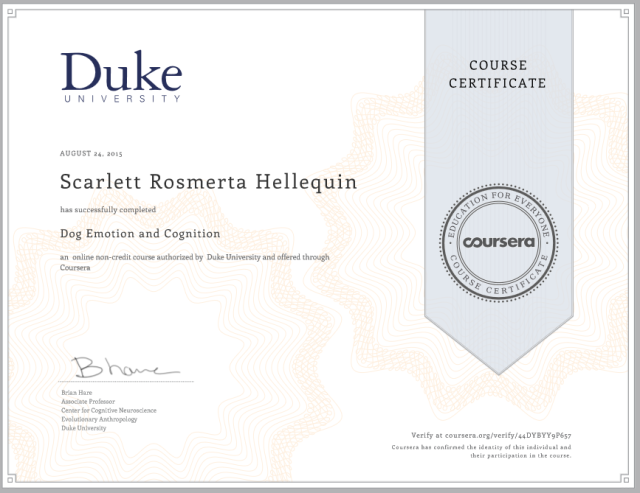 Letti - Dog Emotion and Cognition course certificate